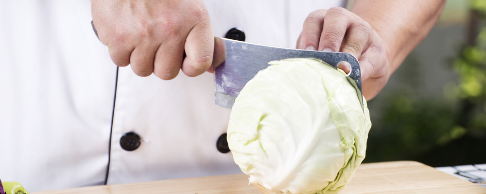 Chef cutting cabbage