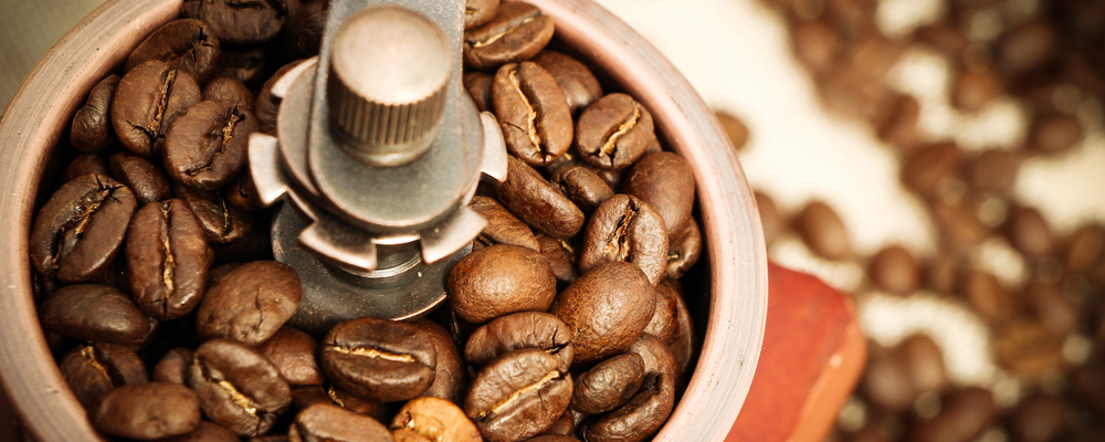 Closeup picture of coffee bean grinder and coffee bean.