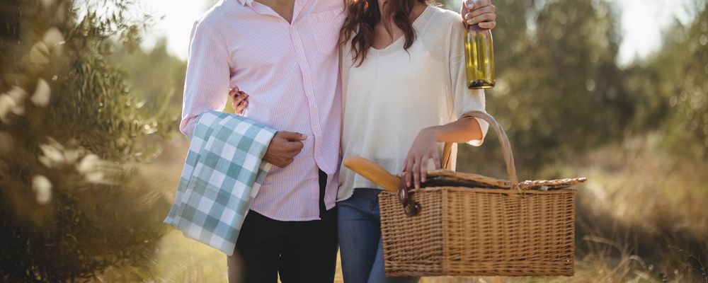 Happy young couple looking at each other while carrying picnic basket