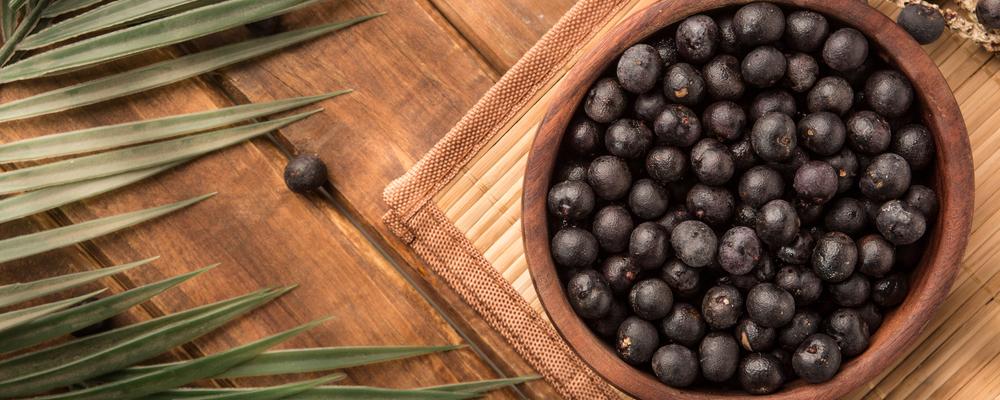 The amazon acai fruit