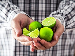 Limes on person's hand